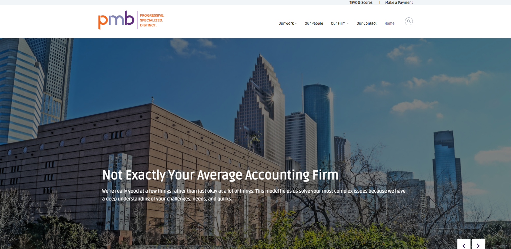 Accounting Firm Website